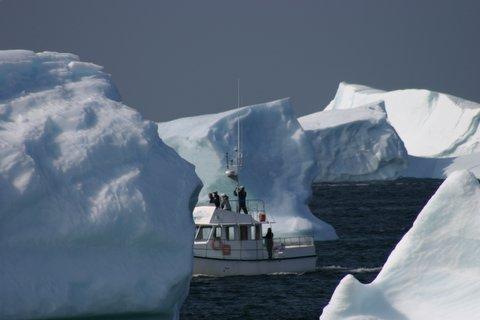 Iceberg Man Tours